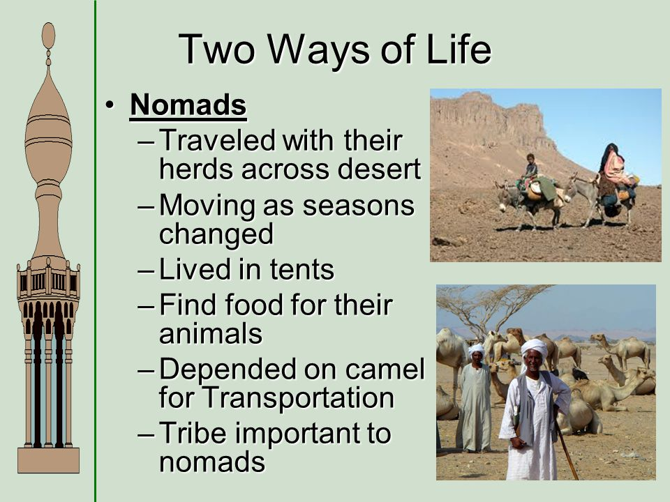 How did the geography of Arabia affect their lives.