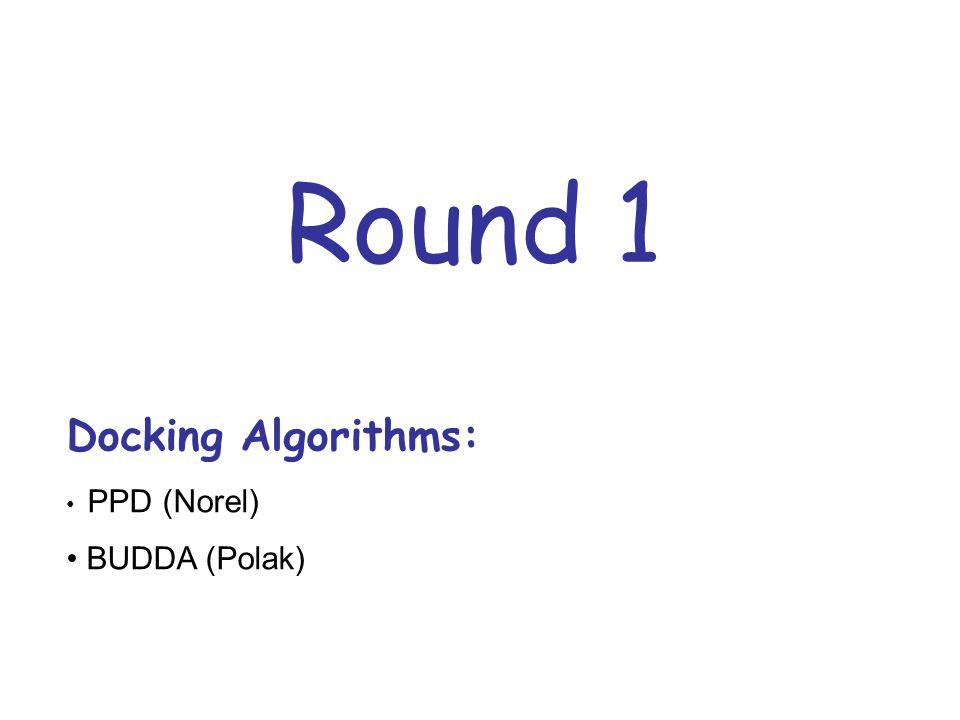 Round 1 Docking Algorithms: PPD (Norel) BUDDA (Polak)