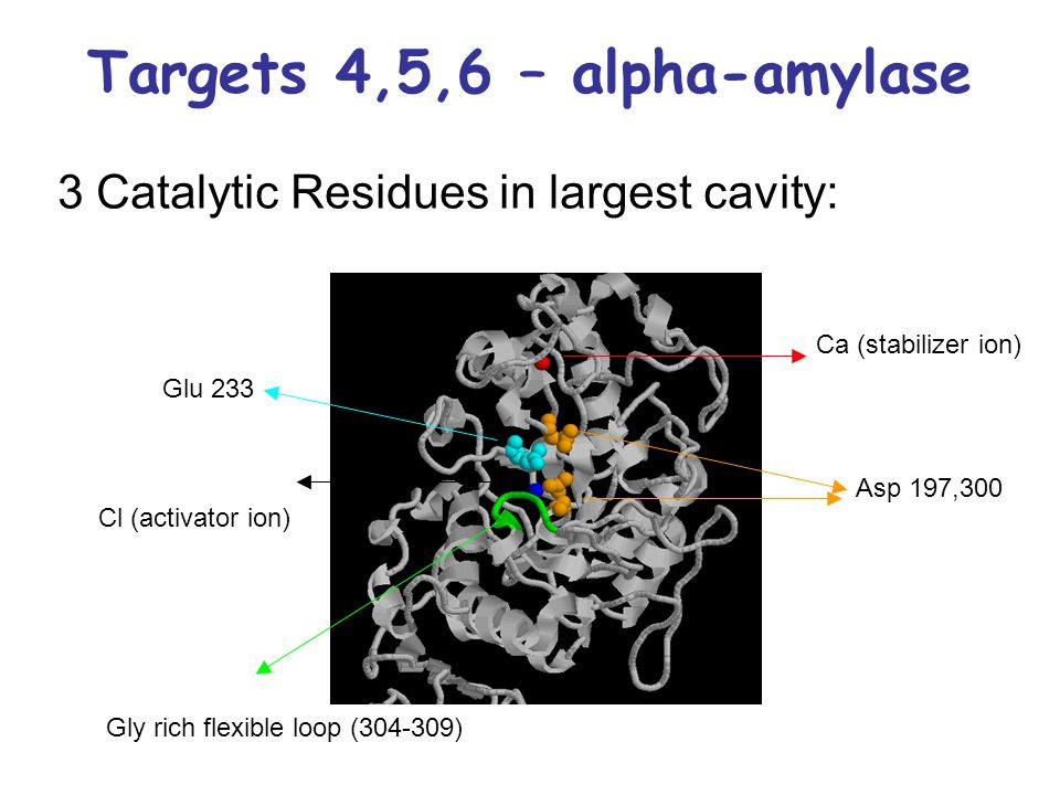 Targets 4,5,6 – alpha-amylase 3 Catalytic Residues in largest cavity: Ca (stabilizer ion) Cl (activator ion) Asp 197,300 Glu 233 Gly rich flexible loo