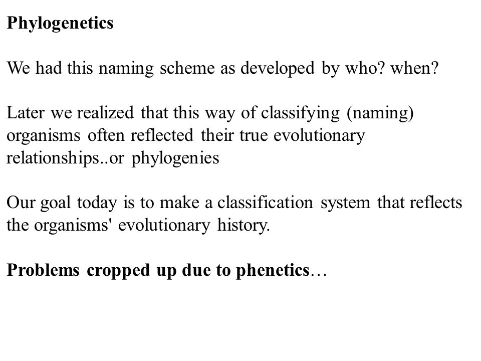 Phylogenetics We had this naming scheme as developed by who? when? Later we realized that this way of classifying (naming) organisms often reflected t