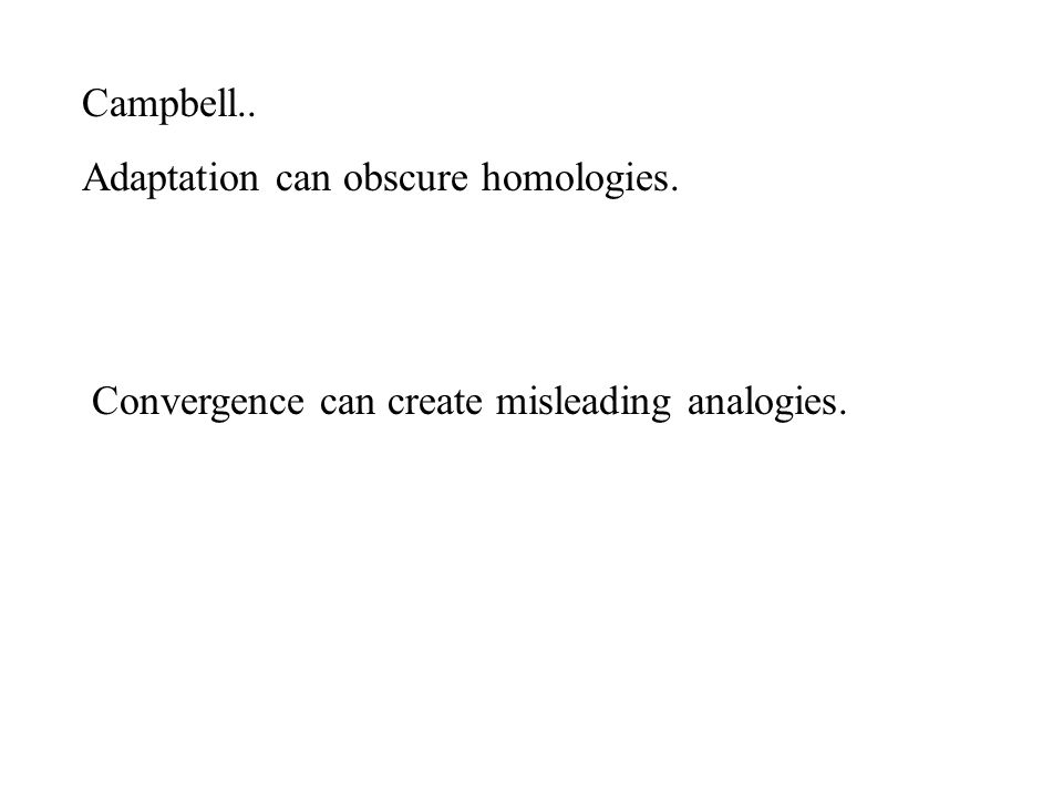 Campbell.. Adaptation can obscure homologies. Convergence can create misleading analogies.