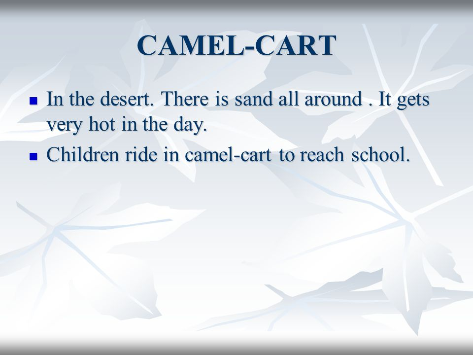 CAMEL-CART In the desert. There is sand all around. It gets very hot in the day. In the desert. There is sand all around. It gets very hot in the day.