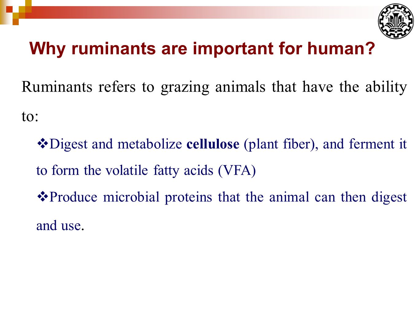 Why ruminants are important for human.
