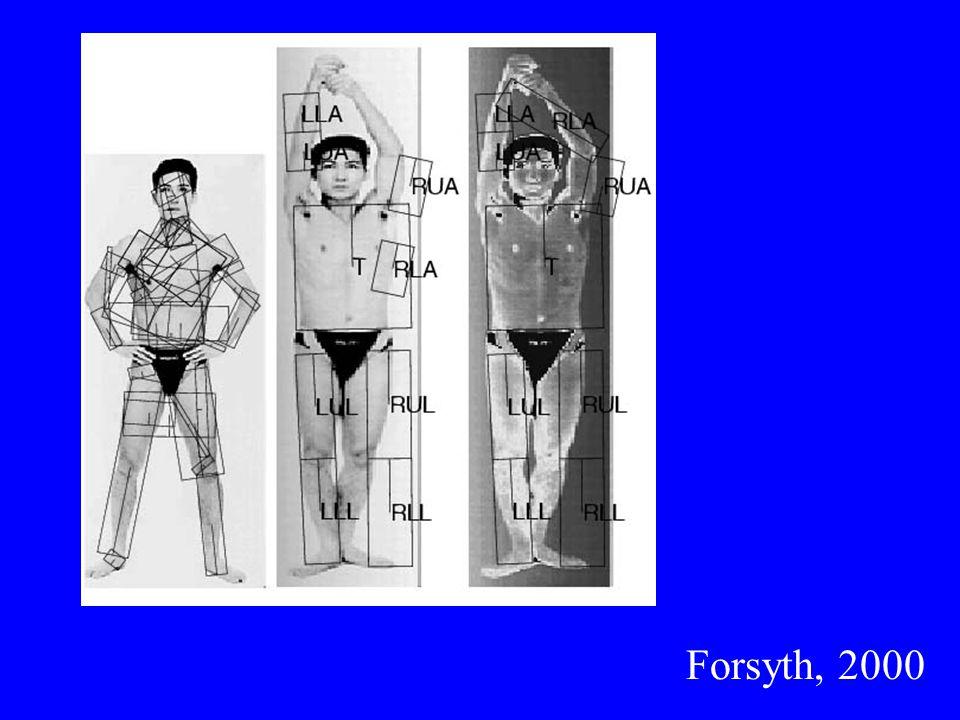 Forsyth, 2000