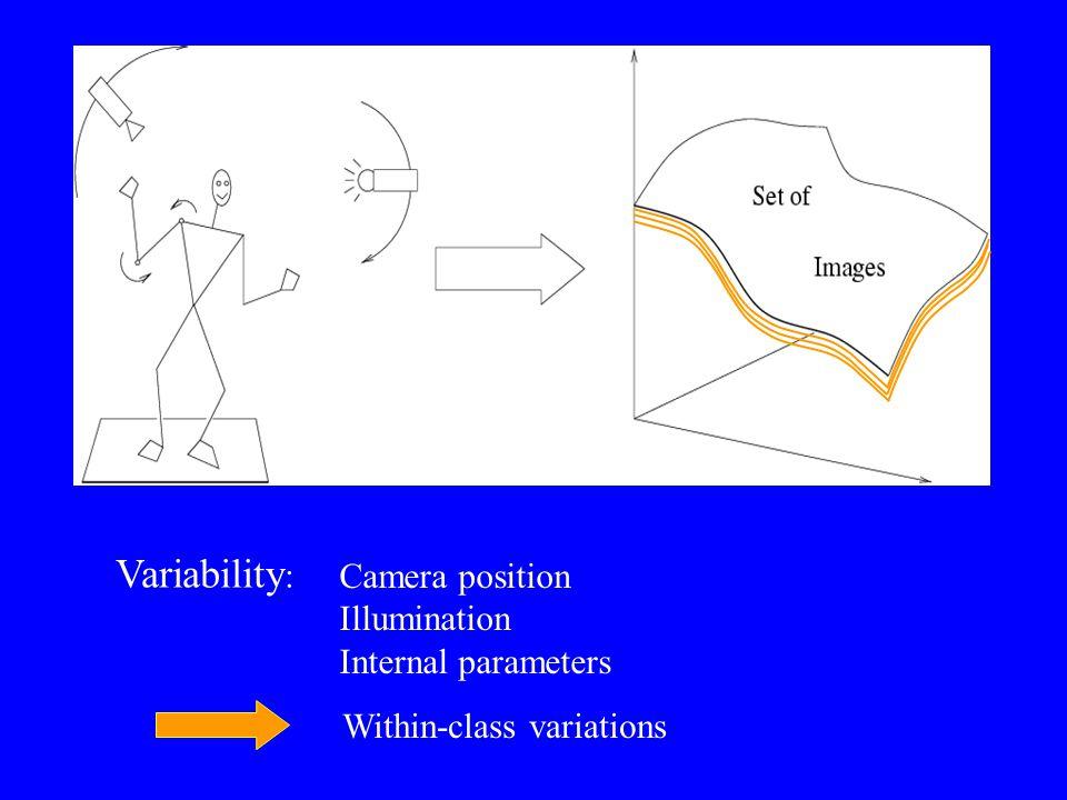 Variability : Camera position Illumination Internal parameters Within-class variations