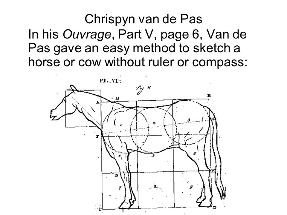 Chrispyn van de Pas In his Ouvrage, Part V, page 6, Van de Pas gave an easy method to sketch a horse or cow without ruler or compass: