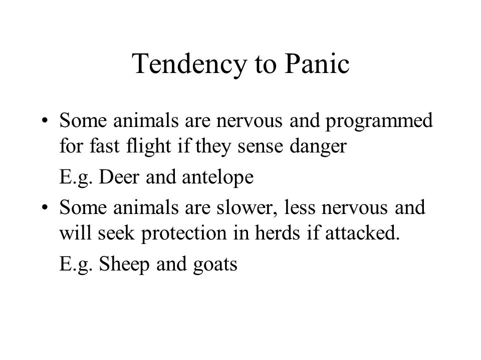 Tendency to Panic Some animals are nervous and programmed for fast flight if they sense danger E.g.