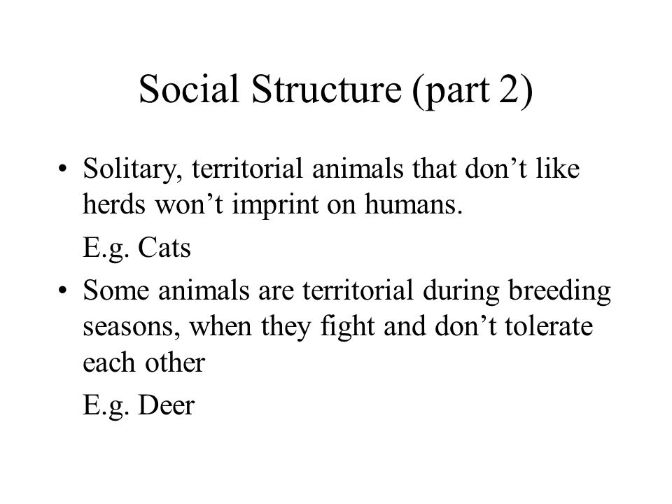 Social Structure (part 2) Solitary, territorial animals that don't like herds won't imprint on humans.
