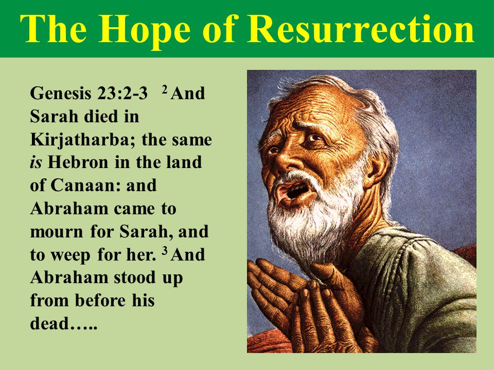 The Hope of Resurrection Genesis 23:2-3 2 And Sarah died in Kirjatharba; the same is Hebron in the land of Canaan: and Abraham came to mourn for Sarah, and to weep for her.