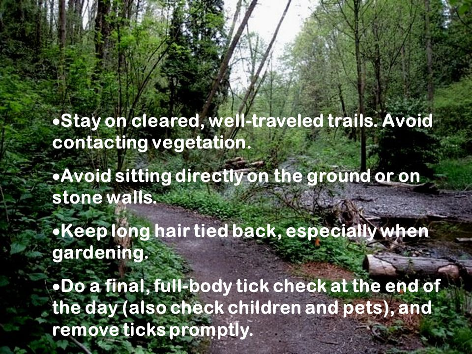 Prevention Tips 2Prevention Tips 2 Stay on cleared, well-traveled trails.