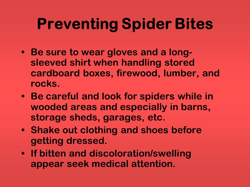 Preventing Spider Bites Be sure to wear gloves and a long- sleeved shirt when handling stored cardboard boxes, firewood, lumber, and rocks.