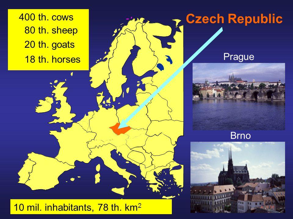 Czech Republic Prague Brno 400 th. cows 80 th. sheep 20 th.