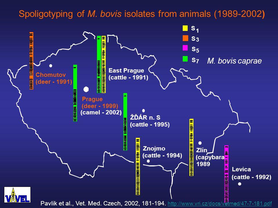 Prague (deer - 1999) Chomutov (deer - 1991) ŽĎÁR n.