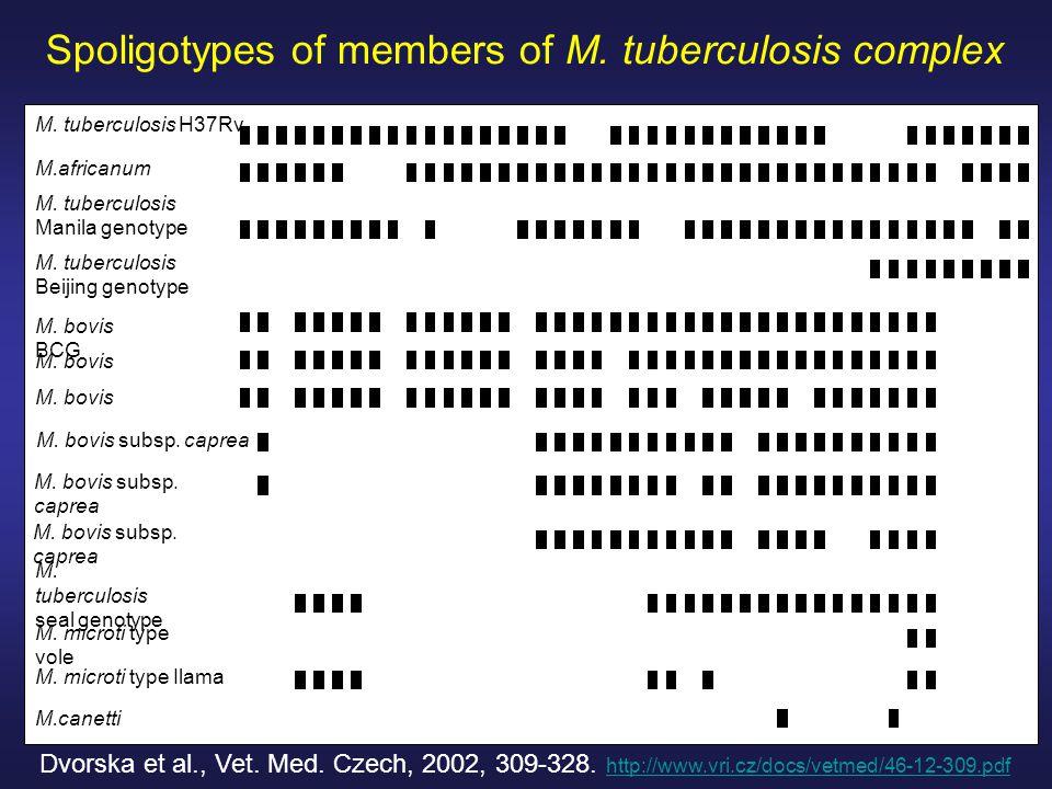 Spoligotypes of members of M. tuberculosis complex Dvorska et al., Vet.
