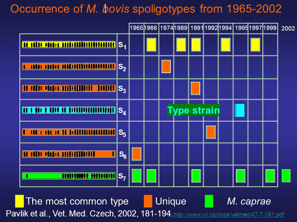 Occurrence of M. bovis spoligotypes from 1965-2002 S 1 S 7 S 2 S 3 S 4 S 5 S 6 1965196619741989199119921994199519971999 Type strain M. capraeThe most