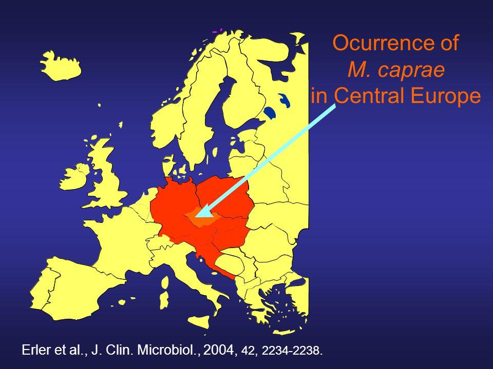 Ocurrence of M. caprae in Central Europe Erler et al., J. Clin. Microbiol., 2004, 42, 2234-2238.