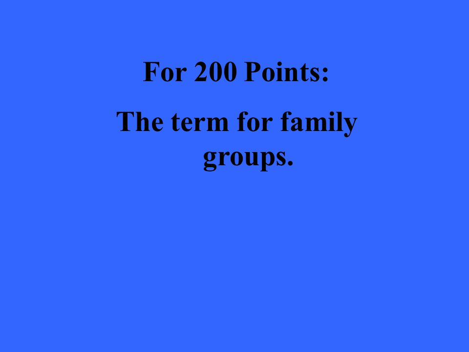 For 200 Points: The term for family groups.