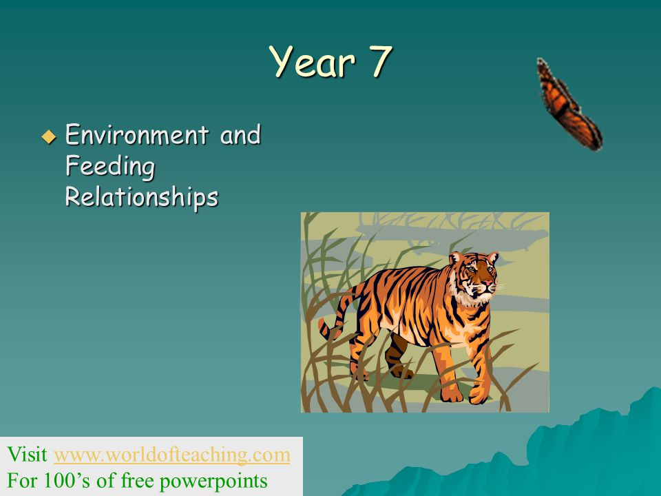 Year 7  Environment and Feeding Relationships Visit www.worldofteaching.comwww.worldofteaching.com For 100's of free powerpoints