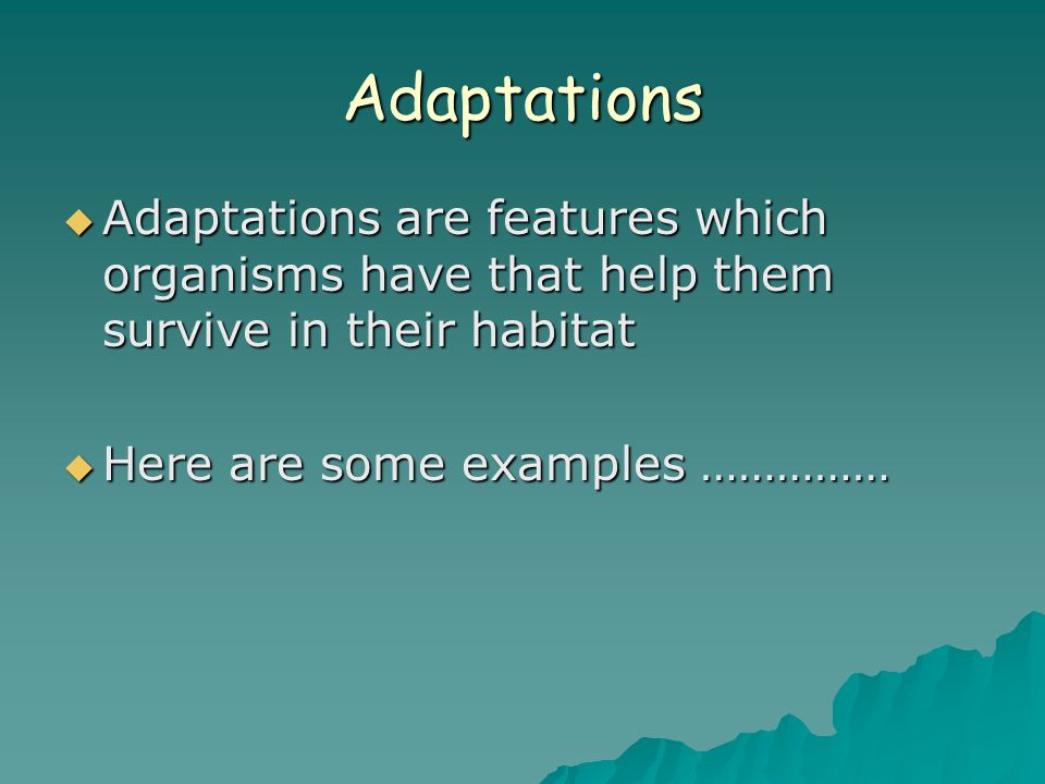 Adaptations  Adaptations are features which organisms have that help them survive in their habitat  Here are some examples ……………
