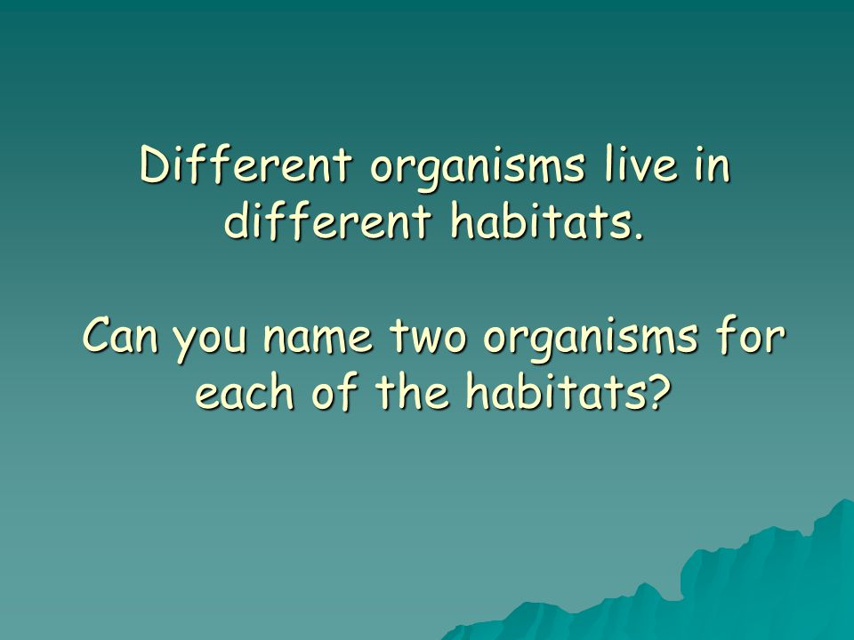 Different organisms live in different habitats.