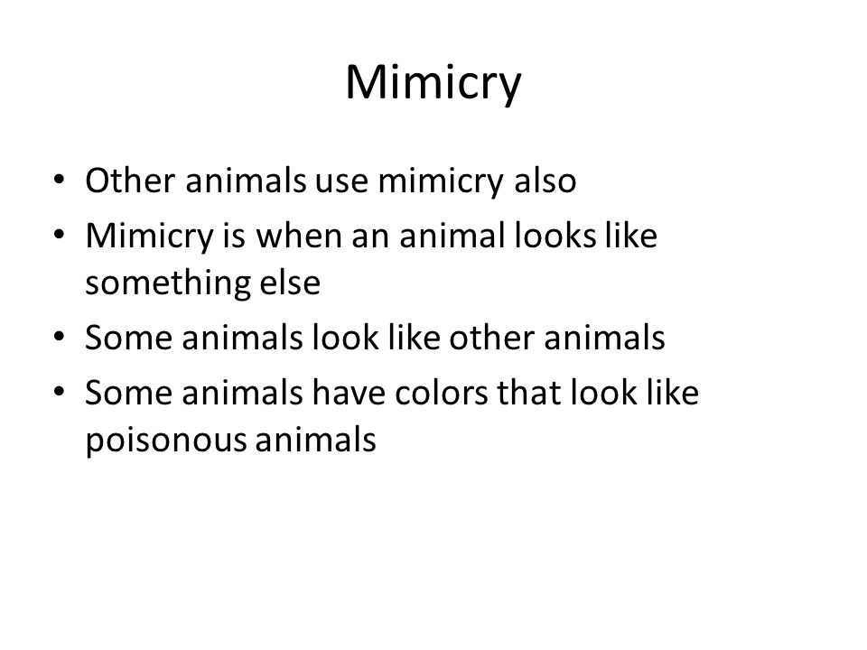 Mimicry Other animals use mimicry also Mimicry is when an animal looks like something else Some animals look like other animals Some animals have colors that look like poisonous animals