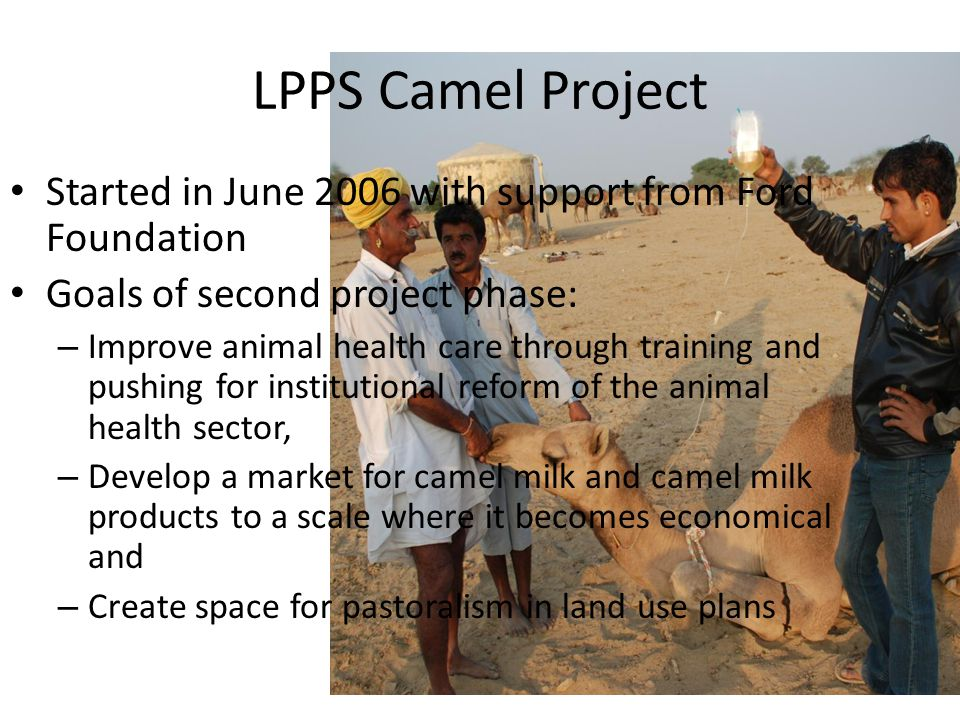 LPPS Camel Project Started in June 2006 with support from Ford Foundation Goals of second project phase: – Improve animal health care through training and pushing for institutional reform of the animal health sector, – Develop a market for camel milk and camel milk products to a scale where it becomes economical and – Create space for pastoralism in land use plans