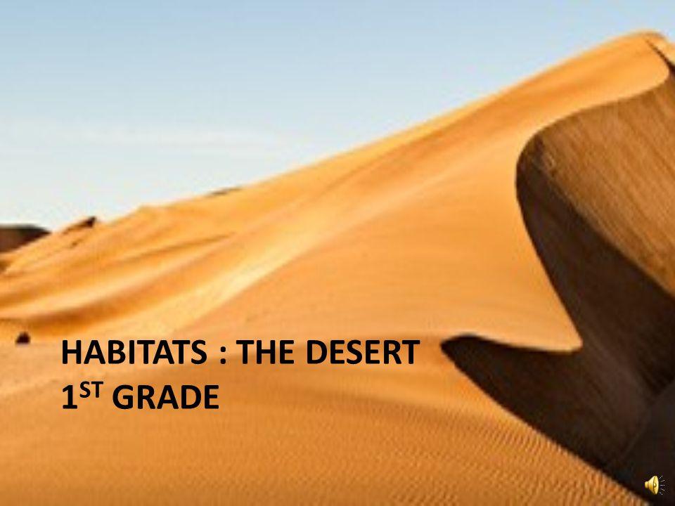 HABITATS : THE DESERT 1 ST GRADE