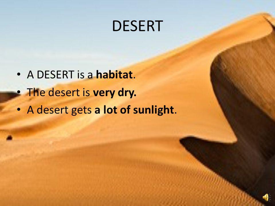 DESERT A DESERT is a habitat. The desert is very dry. A desert gets a lot of sunlight.