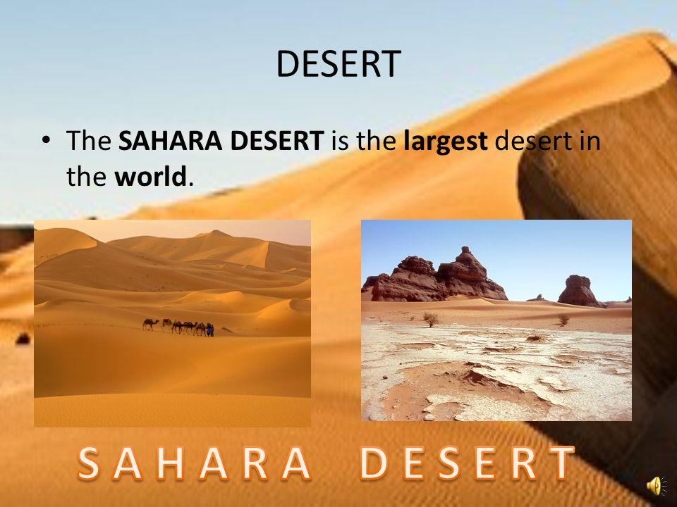 DESERT The SAHARA DESERT is the largest desert in the world.