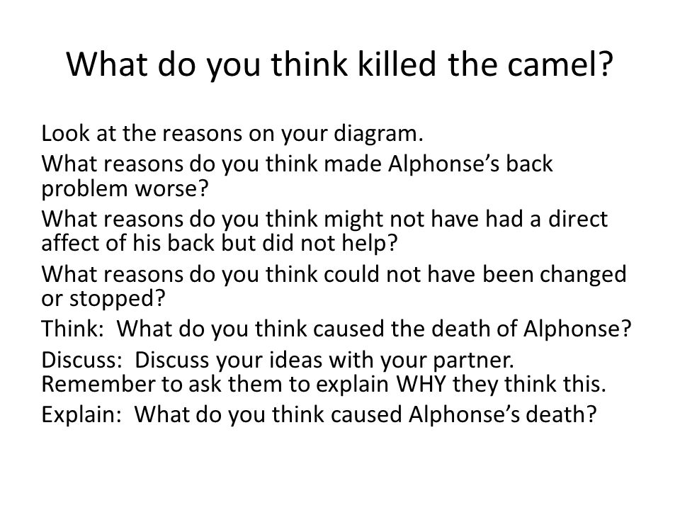 What do you think killed the camel? Look at the reasons on your diagram. What reasons do you think made Alphonse's back problem worse? What reasons do