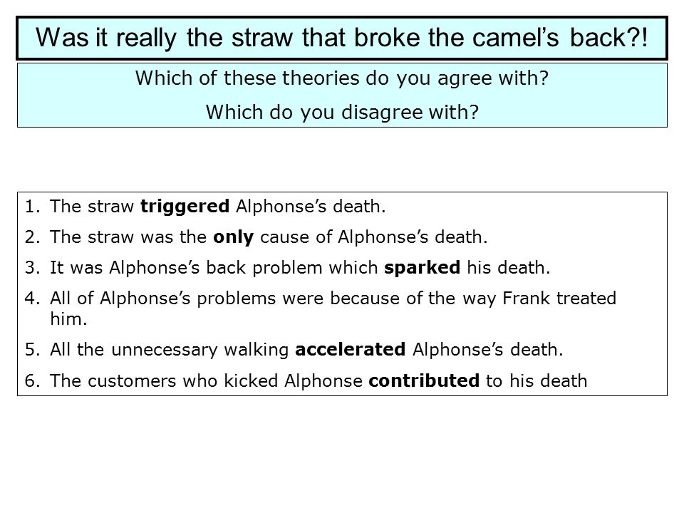 Was it really the straw that broke the camel's back?! Which of these theories do you agree with? Which do you disagree with? 1.The straw triggered Alp