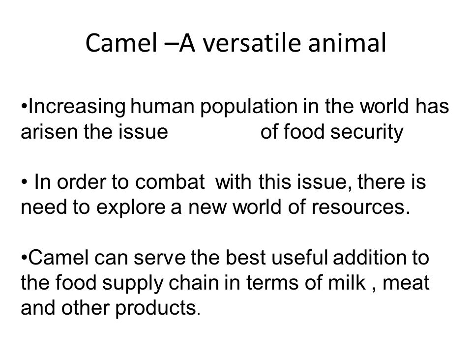 Camel –A versatile animal Increasing human population in the world has arisen the issue of food security In order to combat with this issue, there is need to explore a new world of resources.