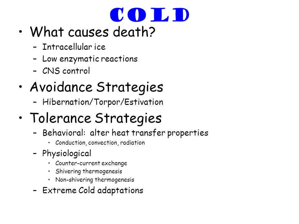 COLD What causes death? –Intracellular ice –Low enzymatic reactions –CNS control Avoidance Strategies –Hibernation/Torpor/Estivation Tolerance Strateg