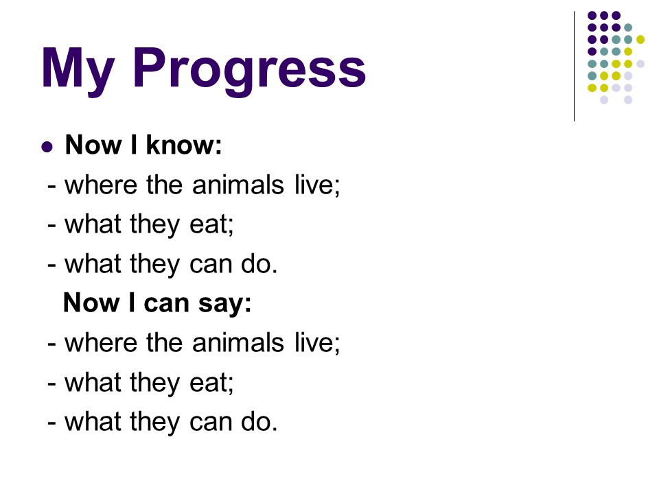 My Progress Now I know: - where the animals live; - what they eat; - what they can do. Now I can say: - where the animals live; - what they eat; - wha