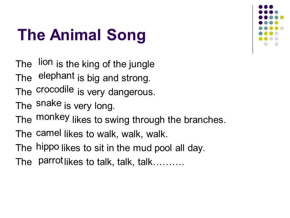 The Animal Song elephant crocodile snake monkey camel hippo parrot lion The is the king of the jungle The is big and strong. The is very dangerous. Th