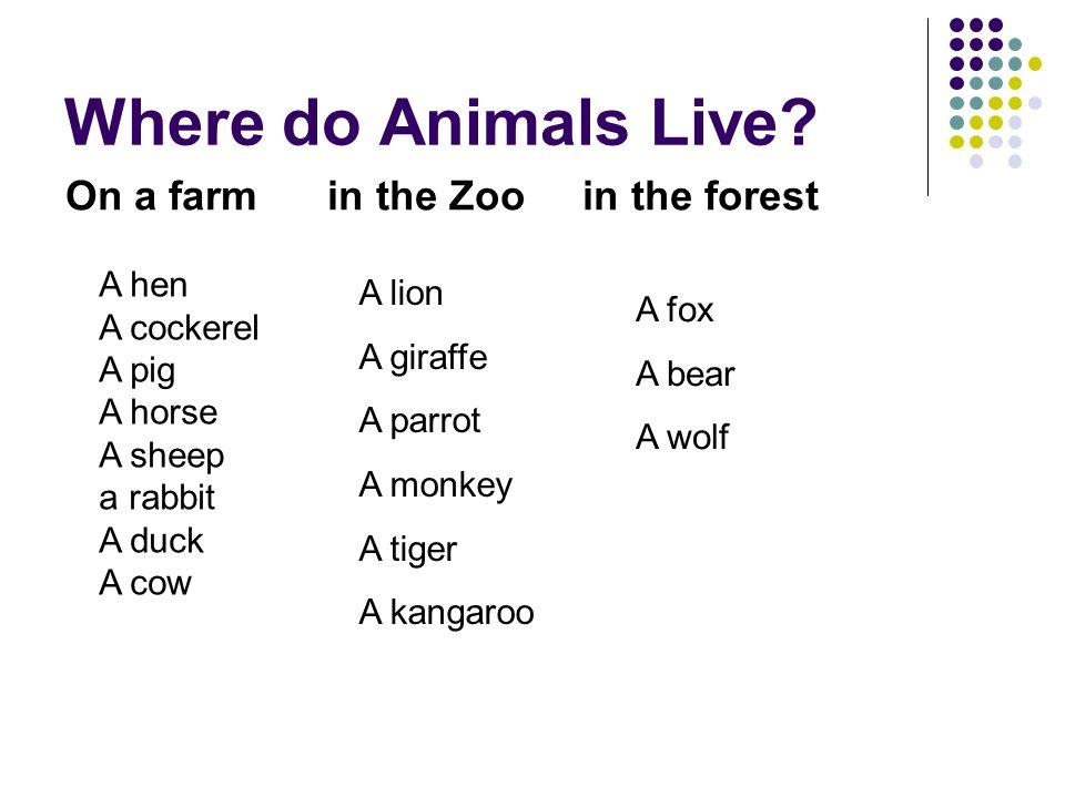 Where do Animals Live? On a farm in the Zoo in the forest A hen A cockerel A pig A horse A sheep a rabbit A duck A cow A lion A giraffe A parrot A mon