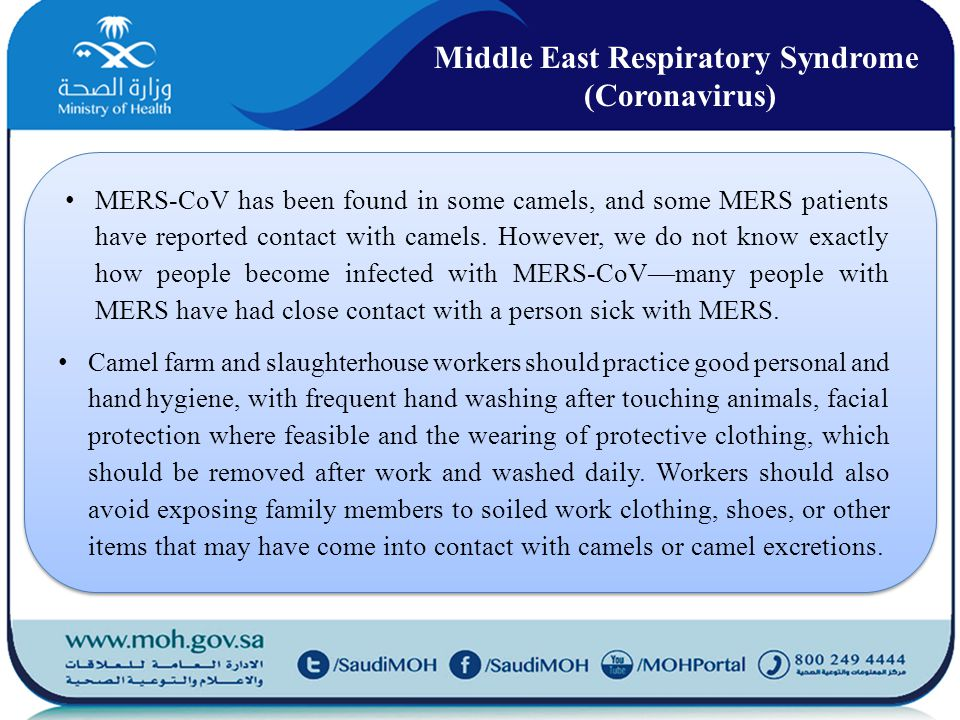MERS-CoV has been found in some camels, and some MERS patients have reported contact with camels.