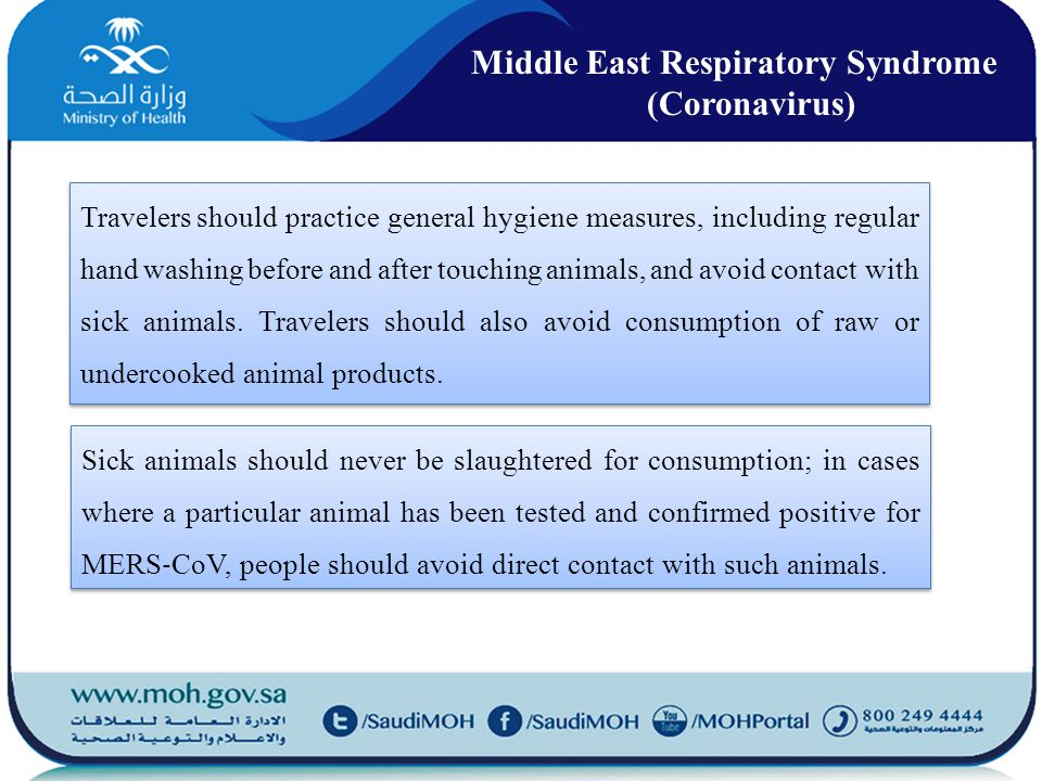 Travelers should practice general hygiene measures, including regular hand washing before and after touching animals, and avoid contact with sick animals.