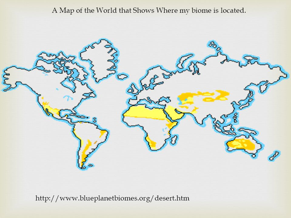 A Map of the World that Shows Where my biome is located. http://www.blueplanetbiomes.org/desert.htm