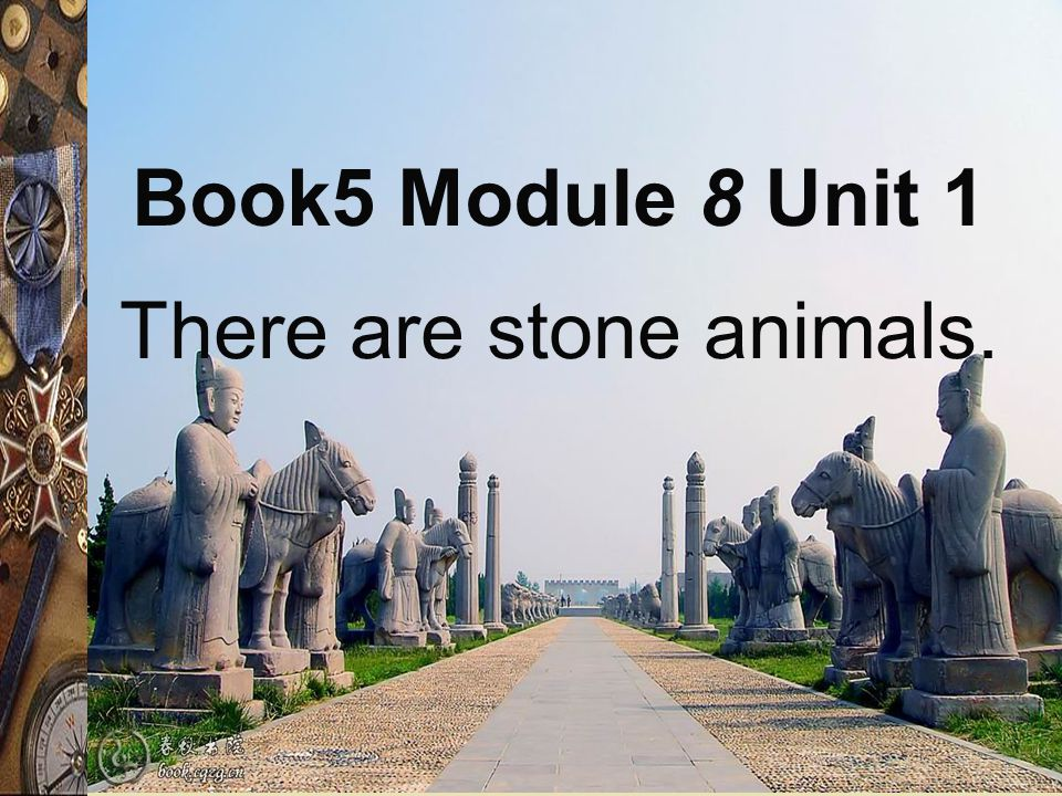 There are stone animals. Book5 Module 8 Unit 1
