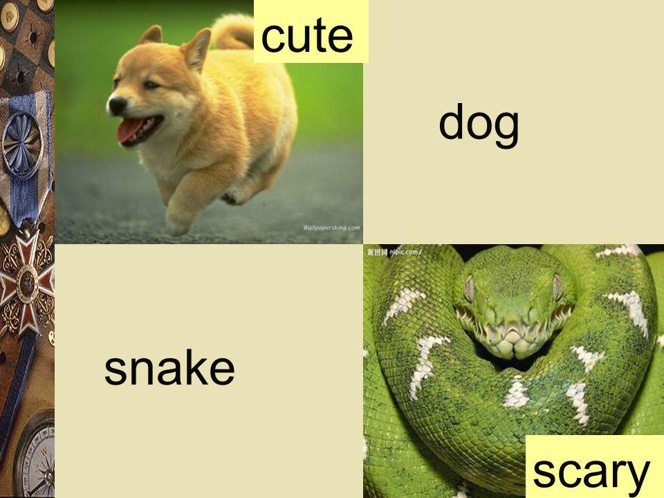 cute dog scary snake
