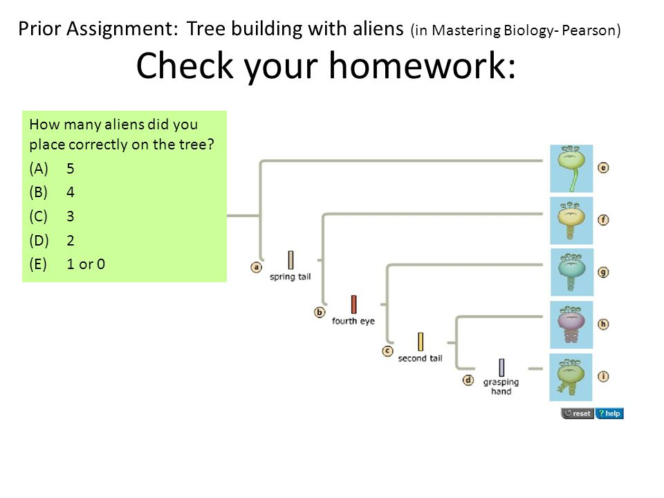 Check your homework: How many aliens did you place correctly on the tree.