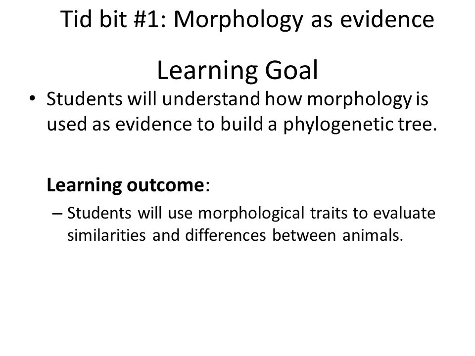 Learning Goal Students will understand how morphology is used as evidence to build a phylogenetic tree.