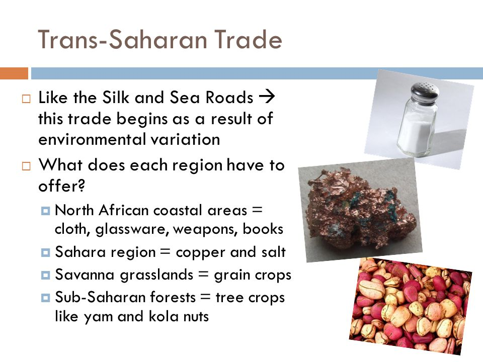 Trans-Saharan Trade  Made possible by the CAMEL.