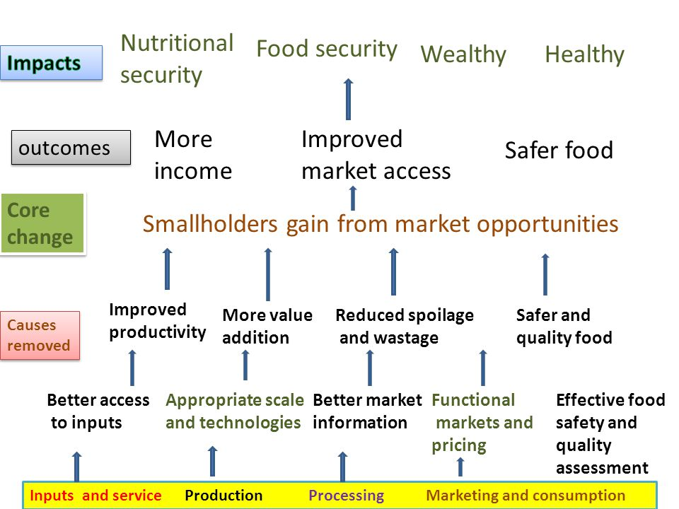 Core change Smallholders gain from market opportunities More income Safer food Improved market access Nutritional security Food security WealthyHealthy Improved productivity More value addition Reduced spoilage and wastage Safer and quality food Better access to inputs Appropriate scale and technologies Better market information Functional markets and pricing Effective food safety and quality assessment Inputs and service Production Processing Marketing and consumption Causes removed outcomes