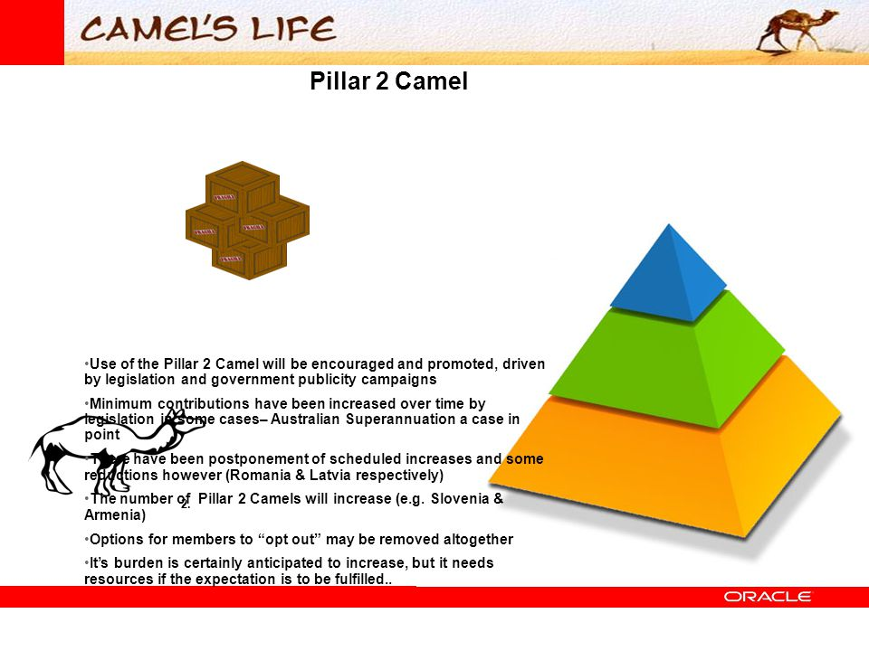 Pillar 2 Camel 2. Use of the Pillar 2 Camel will be encouraged and promoted, driven by legislation and government publicity campaigns Minimum contribu