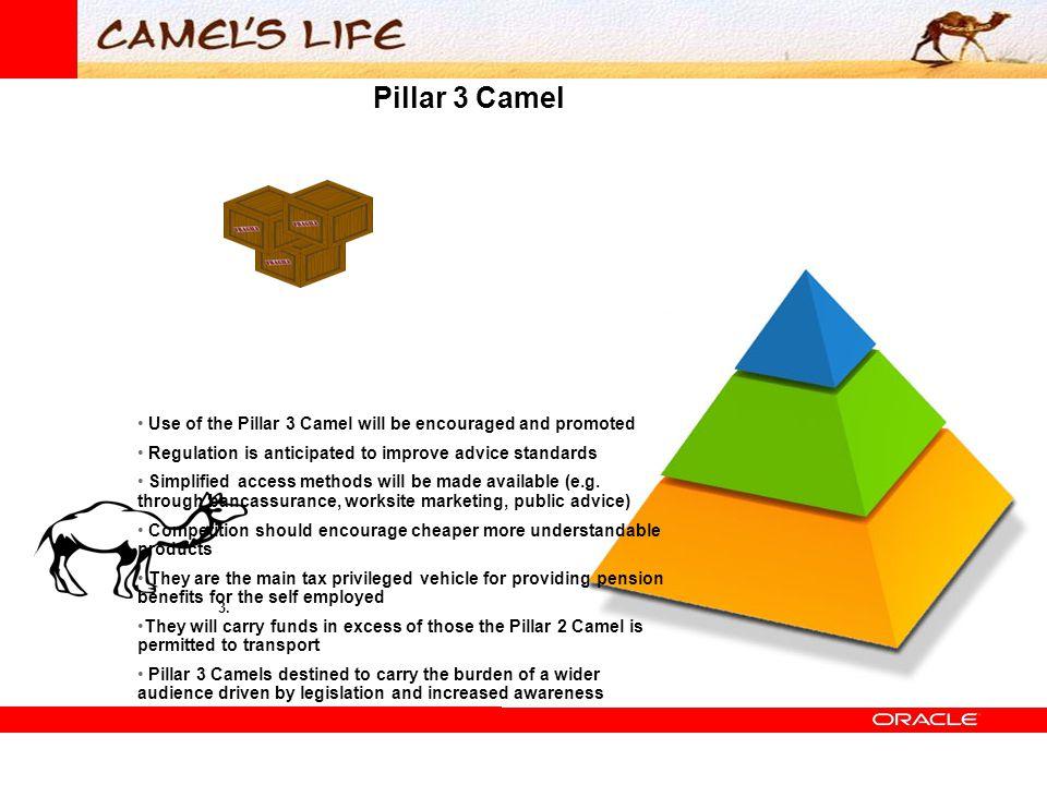 Pillar 3 Camel 3.