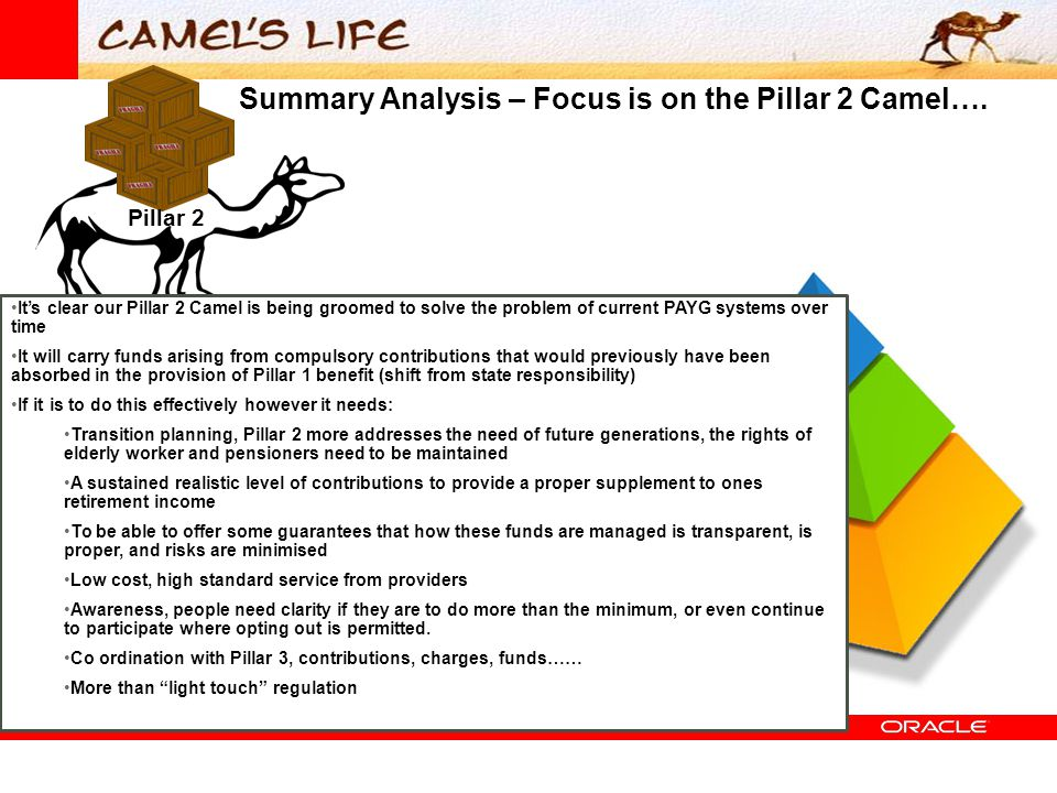 Summary Analysis – Focus is on the Pillar 2 Camel….