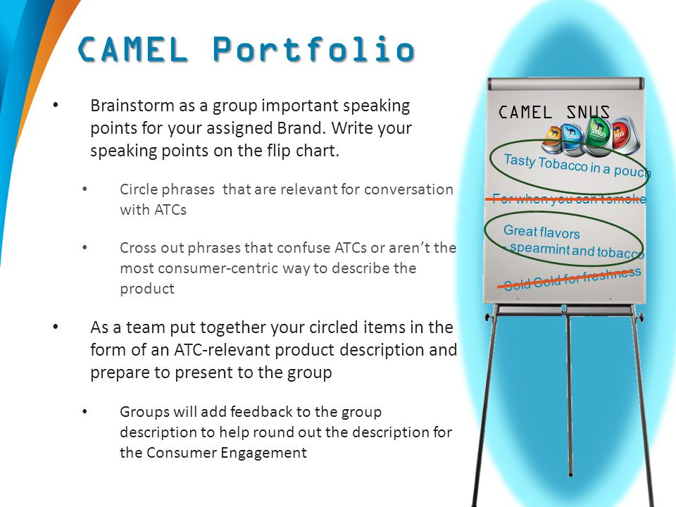 Brainstorm as a group important speaking points for your assigned Brand. Write your speaking points on the flip chart. Circle phrases that are relevan