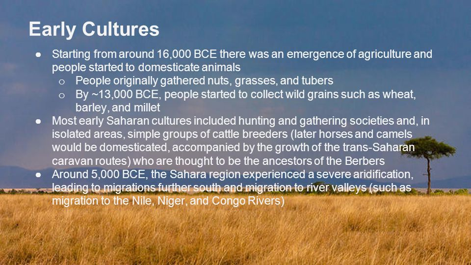 Early Cultures ●Starting from around 16,000 BCE there was an emergence of agriculture and people started to domesticate animals o People originally gathered nuts, grasses, and tubers o By ~13,000 BCE, people started to collect wild grains such as wheat, barley, and millet ●Most early Saharan cultures included hunting and gathering societies and, in isolated areas, simple groups of cattle breeders (later horses and camels would be domesticated, accompanied by the growth of the trans-Saharan caravan routes) who are thought to be the ancestors of the Berbers ●Around 5,000 BCE, the Sahara region experienced a severe aridification, leading to migrations further south and migration to river valleys (such as migration to the Nile, Niger, and Congo Rivers)